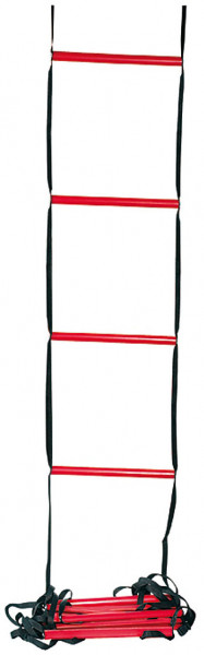 Treeningredel Wilson Training Ladder