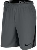 Męskie spodenki tenisowe Nike Dry Short 5.0 - iron grey/black/black