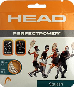 Squash strings Head Perfect Power (10 m) - white