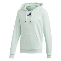 Bluzonas vyrams Adidas Category Graphic Hoodie - dash green/tech indigo