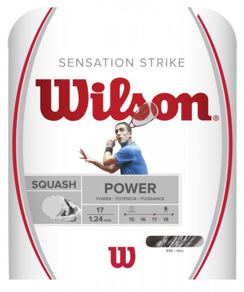Squash strings Wilson Sensation Strike (10 m) - white/black