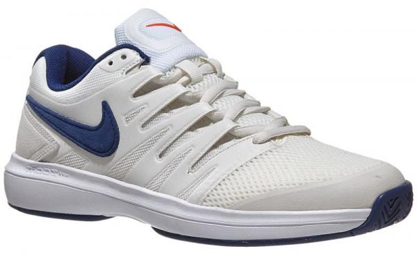 Męskie buty tenisowe Nike Air Zoom Prestige HC - phantom/blue void/sail
