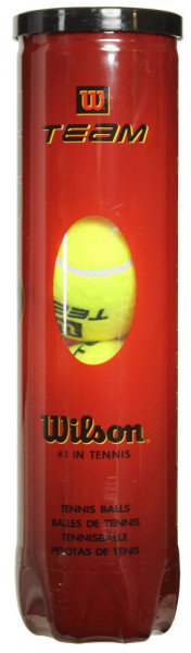 Teniso kamuoliukai Wilson Team Practice 4B